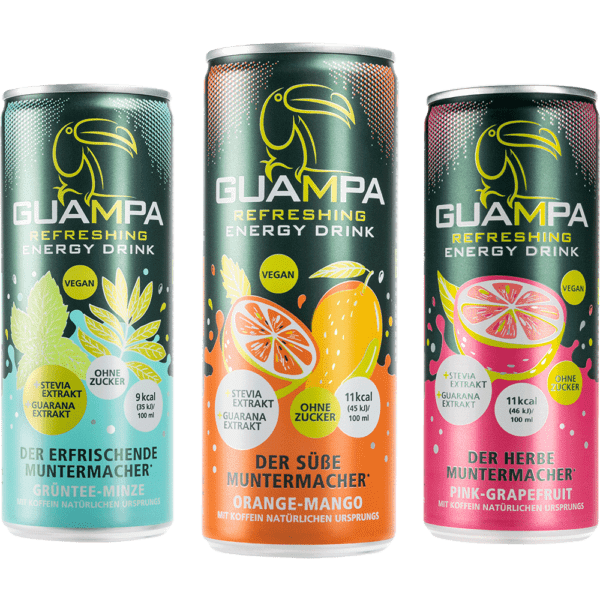 Energy Drink Guampa Dosen Sorten Pink-Grapefruit Orange-mango Grüntee-minze