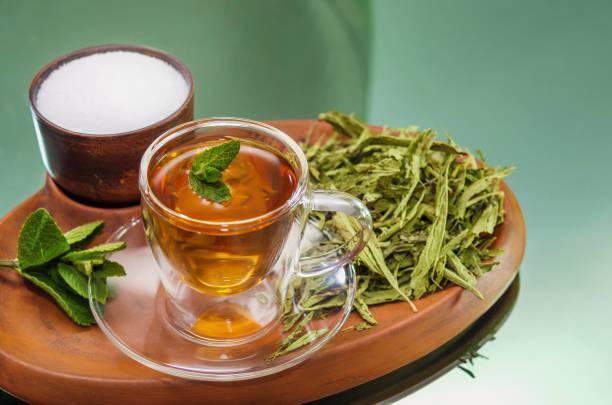 Stevia Tee getrocknet